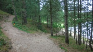 Running by the Oosterdel lake