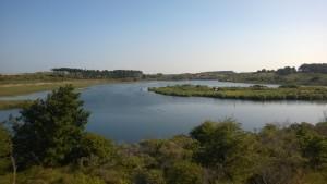 Vogelmeer lake
